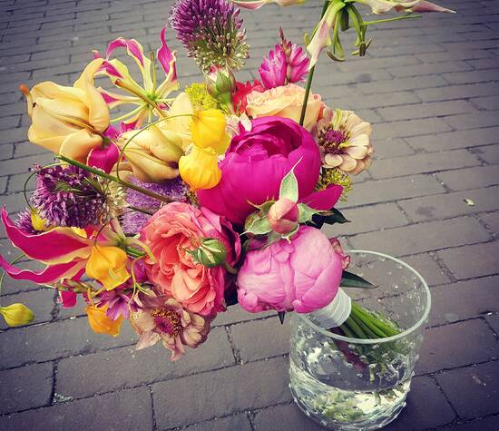 Bijzondere selectie bloemen in felle kleuren