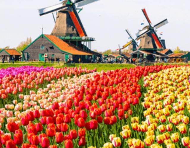 Het beste voor uw bruiloft in Apeldoorn